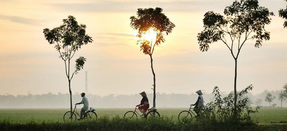 インドネシアで新卒から働く